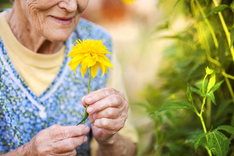 Αποτέλεσμα εικόνας για επεμβατική θεραπεία στη στεφανιαία νόσο